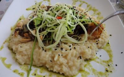 Tour Gastronômico na Av. Litorânea de São Luís